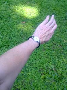 mosquito free arm