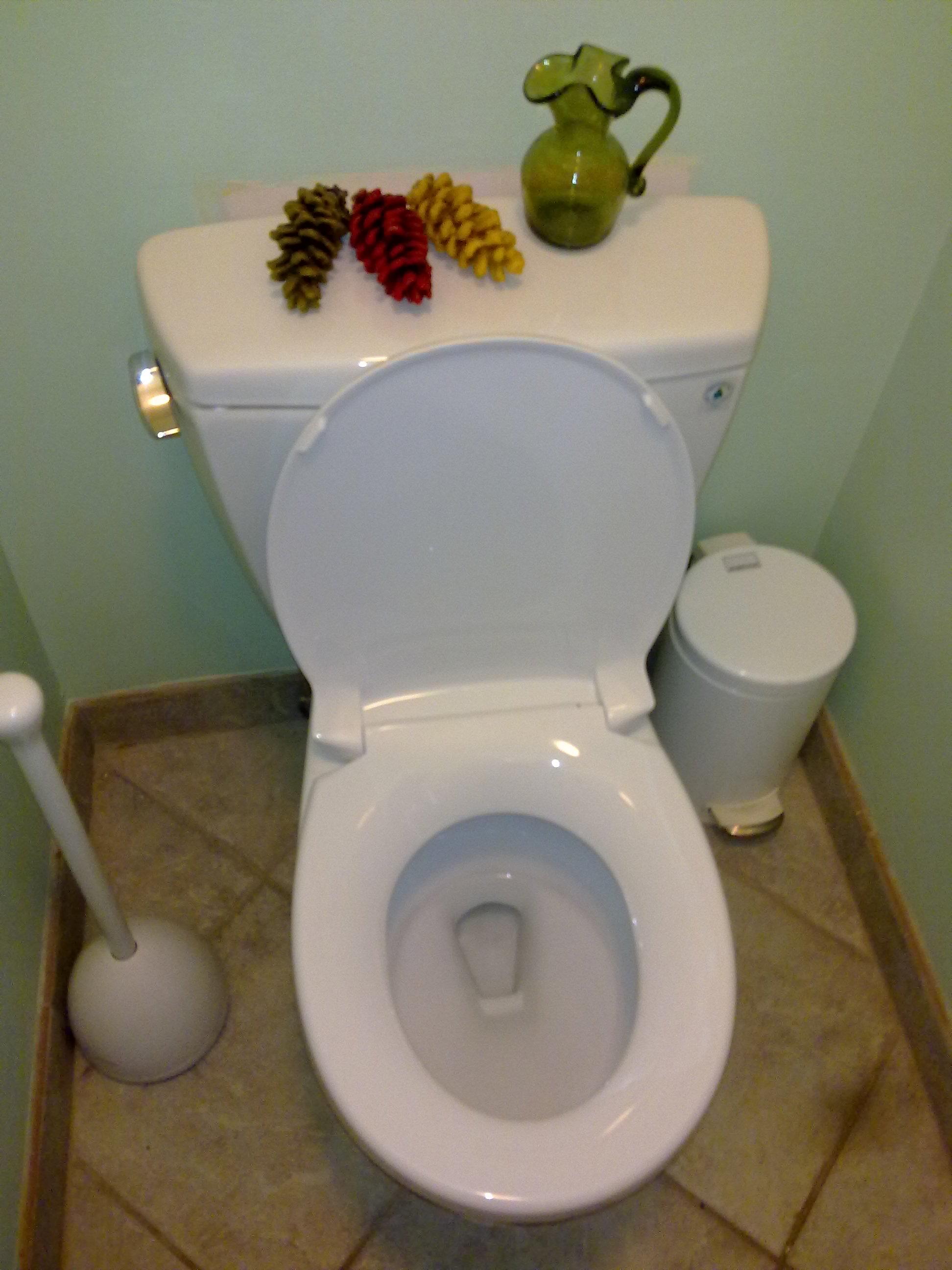 watersense toilet