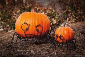 pumpkin stands