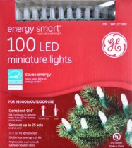 LED mini holiday lights
