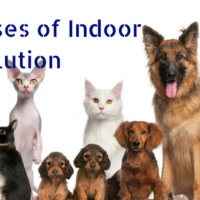 Indoor Air Pollution Causes