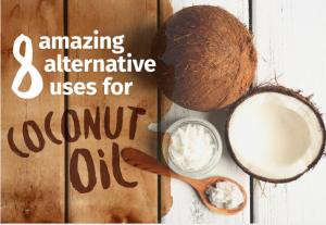 coconut oil alternatives