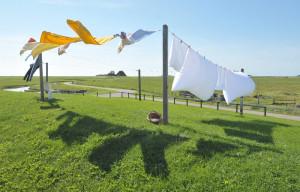 clothesline google labeled for reuse