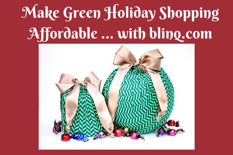 affordable green holiday shopping