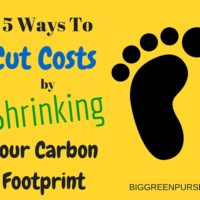 cut costs shrink carbon footprint