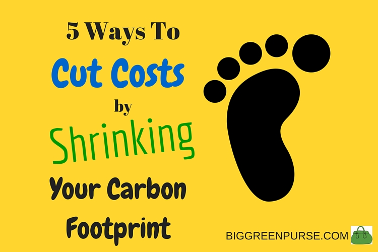 cut costs shrink carbon footprint