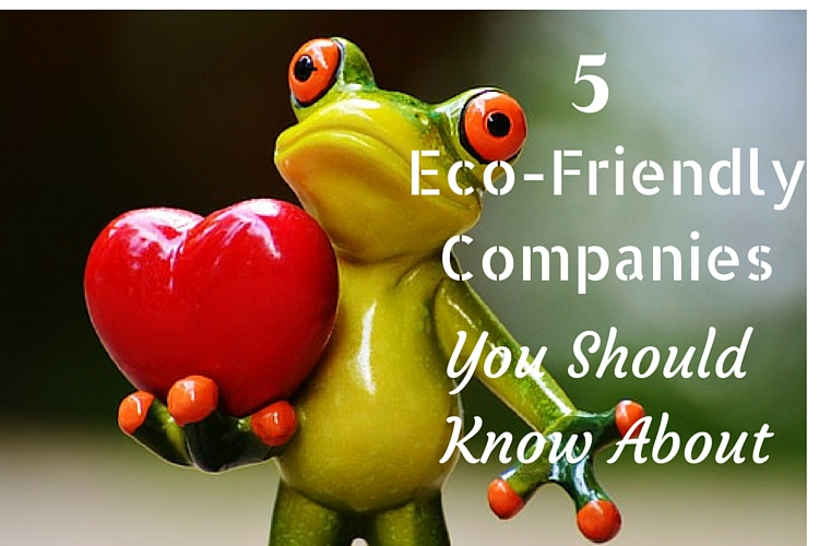 5Eco-FriendlyCompaniesYou ShouldKnowAbout