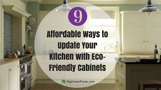Affordable Ways to Update Your Kitchen with Eco-Friendly Cabinets_blog