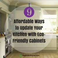 Affordable Ways to Update Your Kitchen with Eco-Friendly Cabinets_featured image