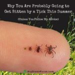 bitten by a Tick featured image