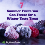 fruit-freeze-featured