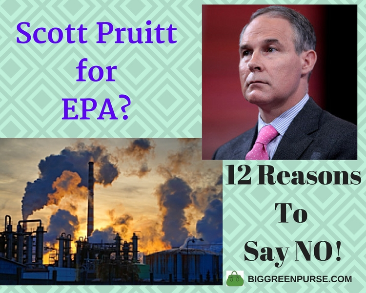 Not to Scott Pruitt