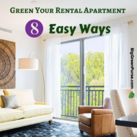 Green Your Rental Apartment 8 Easy Ways_featured