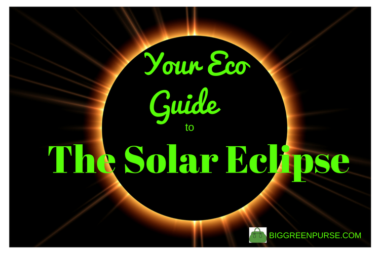 eco guide to the solar eclipse