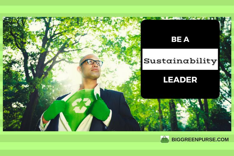 sustainability leader
